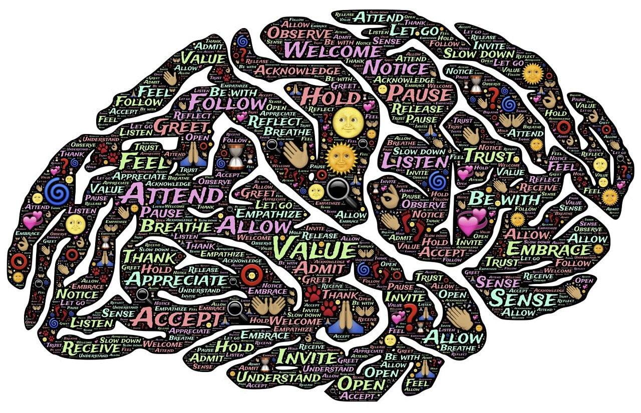 brain, mind, presence